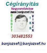 banjozsef.hu - CÉGIRÁNYÍTÁS, Vállalatirányítás szinte ingyen és majdnem azonnal !!!
