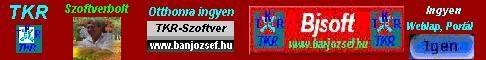 banjozsef.hu - Bjsoft TKR CÉGIRÁNYÍTÁS, Vállalatirányítás szinte ingyen és majdnem azonnal !!!
