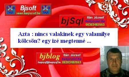 banjozsef.hu - TKR CÉGIRÁNYÍTÁS, Vállalatirányítás szinte ingyen és majdnem azonnal !!!
